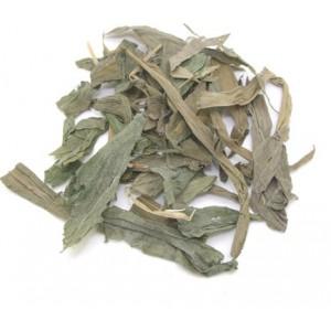 DAN ZHU YE - Bamboo Leaves