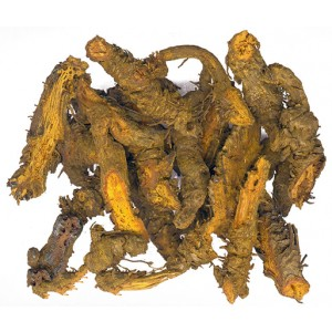 HUANG LIAN - Coptis Root - Golden Thread