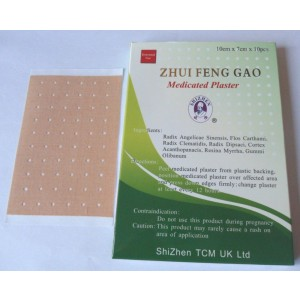 Zhui Feng Gao Herbal Medicated Plaster Patch Muscle Back PAIN Sciatica