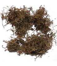 E BU SHI CAO - Centipeda Herb