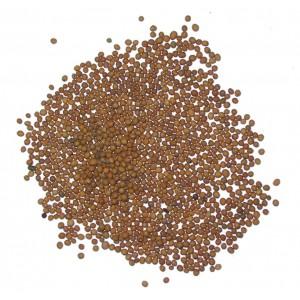 BAI JIE ZI - White Mustard Seed