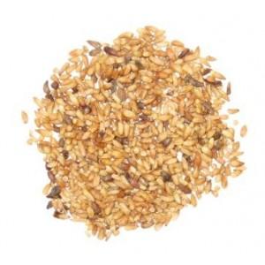 BAI ZI REN - Biota Seed - Arborvitae Seed