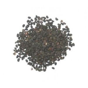 BU GU ZHI - Psoralea Fruit