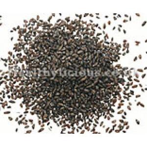CHE QIAN ZI - Plaintain Seed - Psyllium - Semen Plantaginis Herb