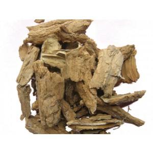 CHUN PI - Ailanthus Bark