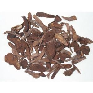 DI YU - Burnet Root