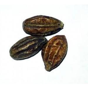 HE ZI - Terminalia Fruit - Chebula Fruit