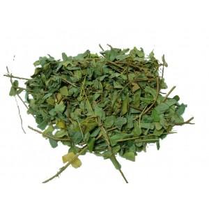 JI GU CAO - Agrus Leaf