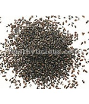 Psyllium - Plaintain Seed 500 grams