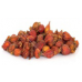 ZHI ZI - Gardenia Fruit, - Capejasmine